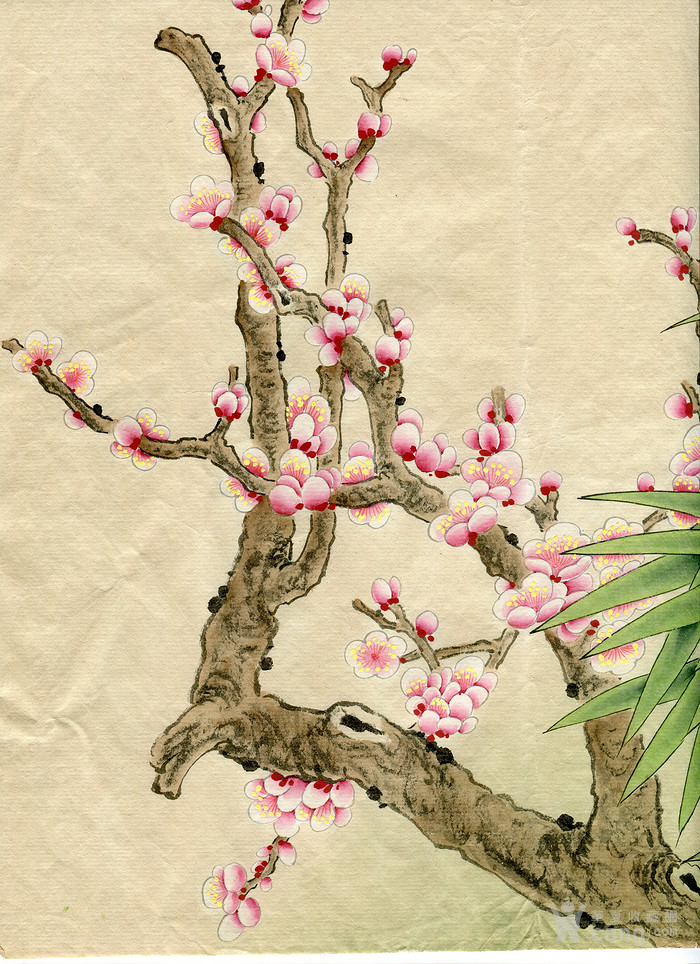 赵少昂 花鸟画 工笔画 5 7