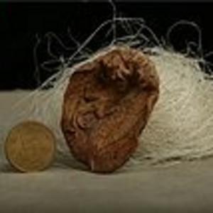 加里曼丹高油 沉香木精雕件6.2g手把件 吊坠挂件 保真收藏